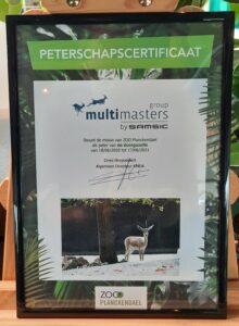 Multi Masters Group est le parrain de la gazelle des dunes au ZOO Planckendael