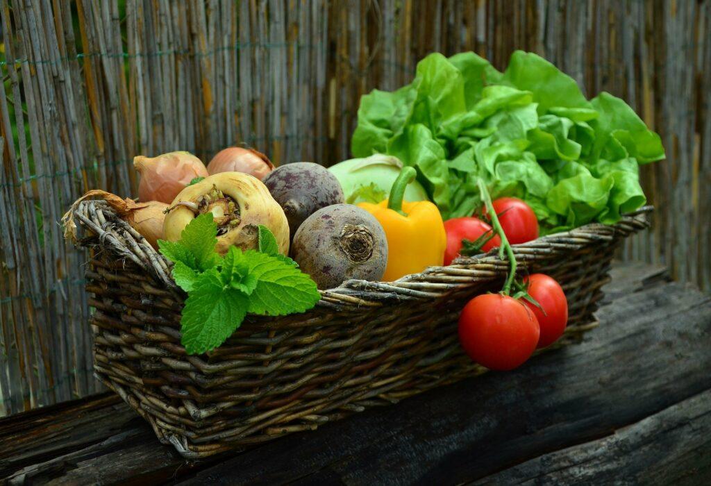 Semer et planter des légumes dans votre jardin: faites-le en printemps.