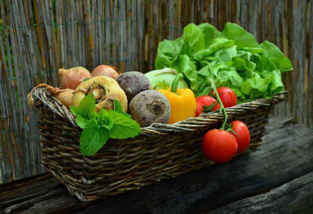 In de lente werken in de tuin levert je later lekkere groenten op.  groenten - légumes - vegetables