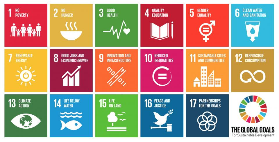 The 17 Sustainable Development Goals of the United Nations.